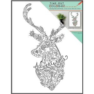 Walmart Mainstays 13×10 Color Your Own Wall Art, Frame Included